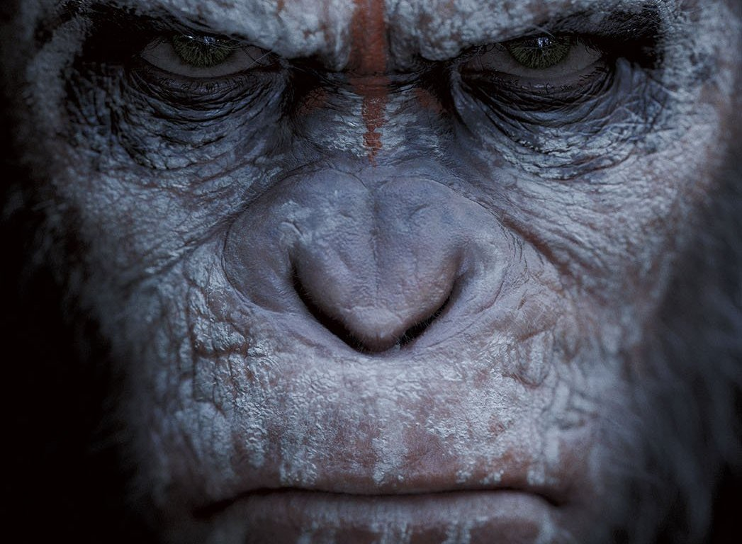 Dawn Of The Planet Of The Apes 2014 Manju Reijmer